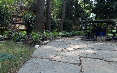 What to put between flagstone joints–polymeric sand or stone dust?